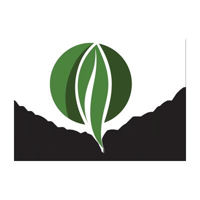Logo Design Wayanadans Calicut