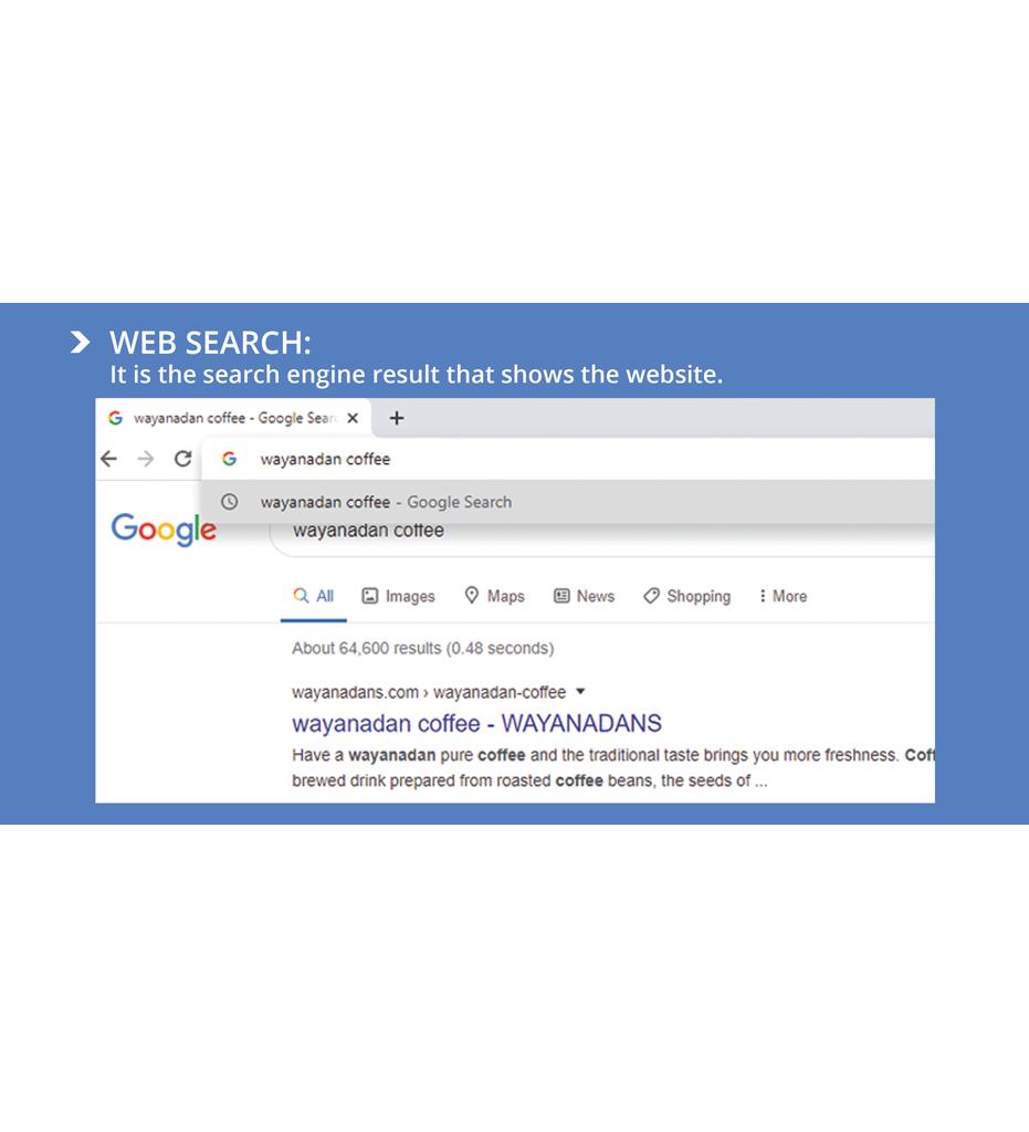 search engine optimization kerala